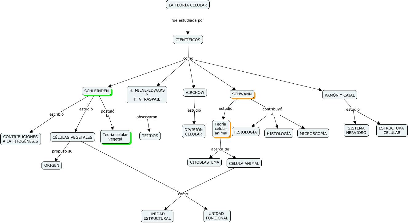 Científicos Que Estudiaron La Teoría Celular